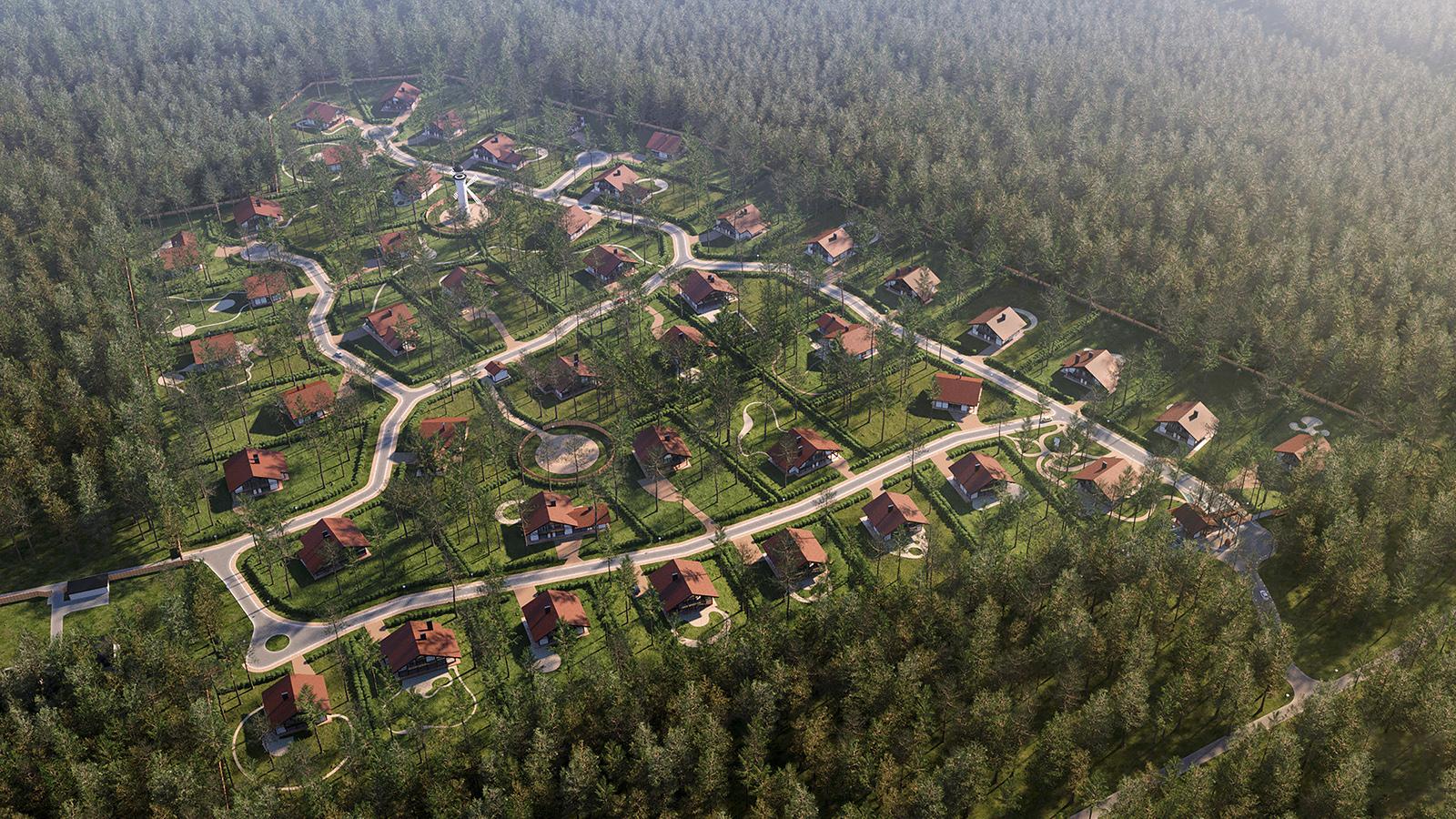 КоттеджныйпоселокШишкиновЗеленомгороде.DВизуализация